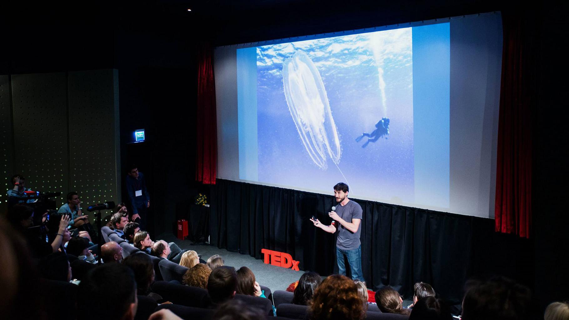 Semenov TEDx